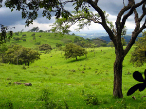 "In the distance is the ""Bajura,"" the western lowlands and Tempisque River Basin of Guanacaste."