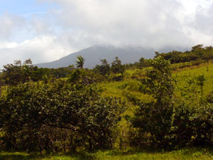 From the wide hilltop at the west end of the farm, there is this view of the dormant Tenorio Volcano, which is often partly obscured by clouds.