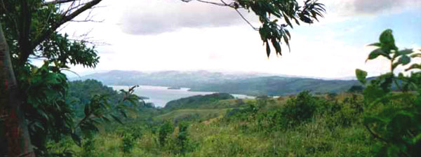 The fantastically fertile and verdant finca has a wonderful view of the northwest end of Lake Arenal.
