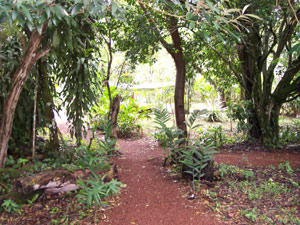 Charming pathways  wind through the gardens and woods.