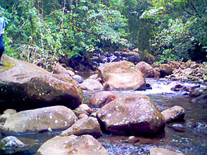 Th Aguacate River is shaded by indigenous trees through most of its length.