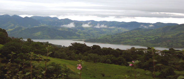 There are many places on the two fincas with excellent views of Lake Arenal as well as of Arenal Volcano.