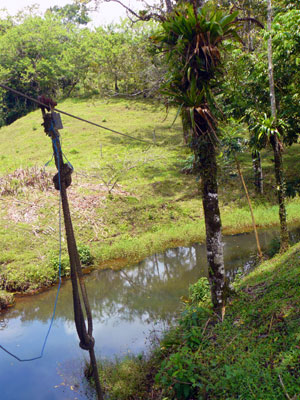 A canopy cable is rigged across one of the three ponds.