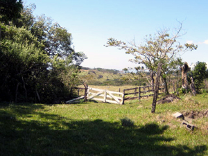A gate leading past woods to a level pastures on the large finca.