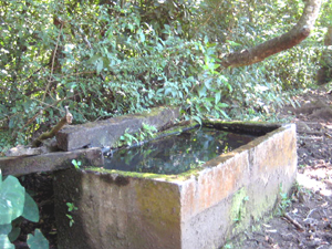 Here is another large water trough brimming with pure spring water.