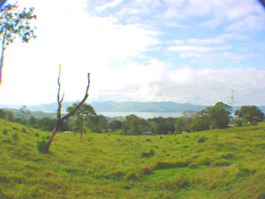The 55 acres has many views of Lake Arenal.