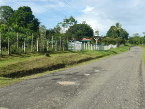 The farm fronts on the Guatuso road at the edge of the village of Cabanga.