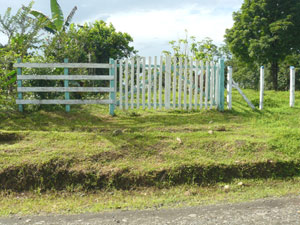 The gate on the Guatuso road begins the internal road which leads to the middle of the finca.