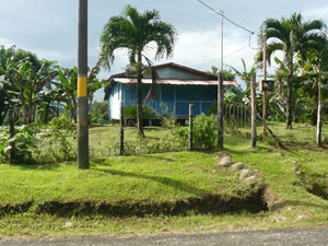 One of the farm's two houses is this small place beside the Guatuso road.