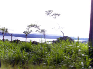 The property approaches quite close to Lake Arenal and has good lake views.