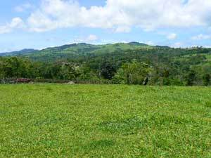 Acreage for sale at Lake Arenal, Costa Rica