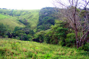 The finca has a terrain of great variety.