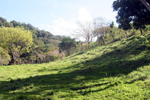 The wide pasture raches a hill that crests in a Tlaran barrio.