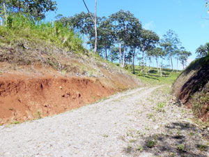This new road continues to the top of the hill, accessing the three lots of about 1.25 acres each.