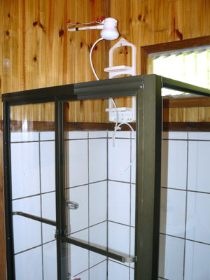 Though small, the cabins have roomy modern showers such as this one.