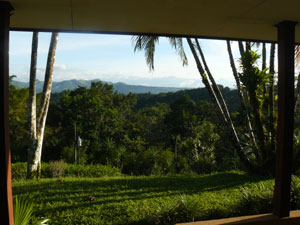 There's a very nice view of forest and mountains from the veranda.