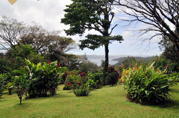 Las Flores is a mature development bordering the lake. Besides the well maintained general landscaping, it has retained many indigenous trees, which provide privacy as well as beauty.