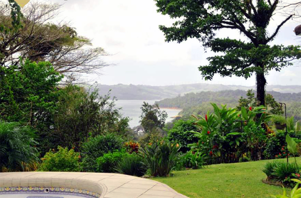 The home has a beautiful lake view as demonstrated in this photo from beside the swimming pool.