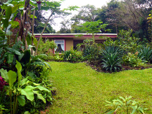 Much of the half-acre is nicely landscaped with a variety of tropical plants and trees.
