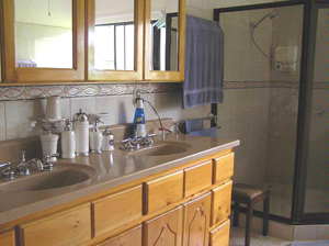 The master bathoom has double sinks, an oversize shower, and a spa tub.