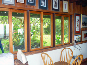 A wide bank of windows opens the back gardens to the living room.
