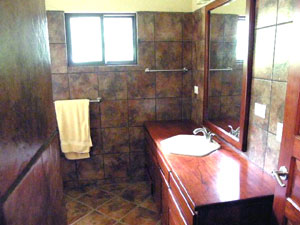 One of the house's 2.5 bathrooms.