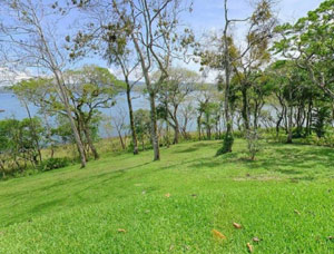 In front of the homes, a lawn slopes down through the treeline to the beach and lake.