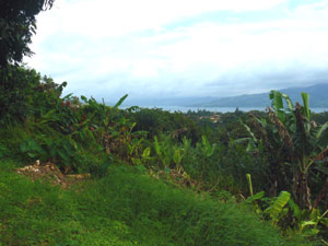 From the back yard, there's a long view toward the Arenal Volcano.