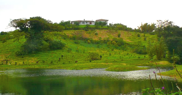 The home enjoys wonderful 360-degree vistas from its hilltop site. Before it is a 2.5-acre private lake stocked with tilapia.