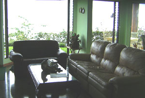 The house is being sold fully furnished, including the leather living room furniture.