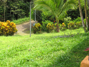 Though within a few blocks of the center of Nuevo Arenal, the location is distinctly rural and private.