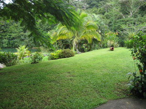 The landscaped grounds with nice lawns overlook a forest ppol fed by a stream running through the community.