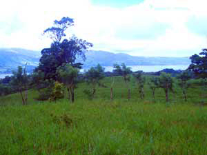 The ranches above La Union also have lake views.
