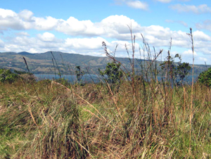 From a great buildable site on the upper lot there is this fine view of Lake Arenal.