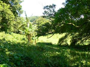 Lot for sale at Lake Arenal, Costa Rica