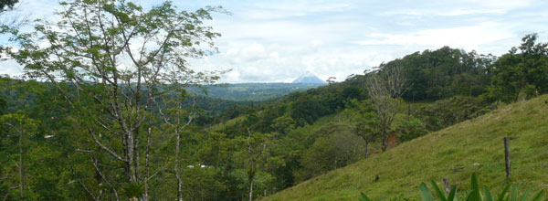The panorama from this beautiful lot includes Arenal Volcano, in front of it Nuevo Arenal, and, closest, Aguacate village.