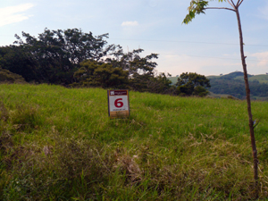 Lot 6 is on 1.4 acres with good building sites and wonderful views.