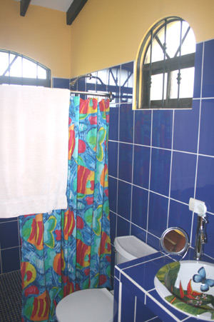 The bathroom is colorfully decorated and has modern fixtures.